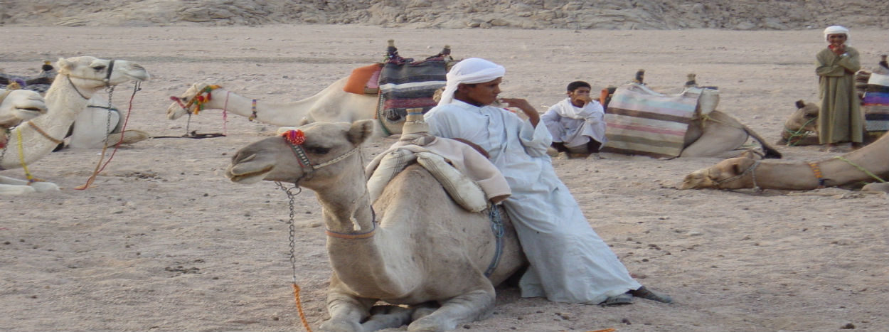 Egypt holiday packages