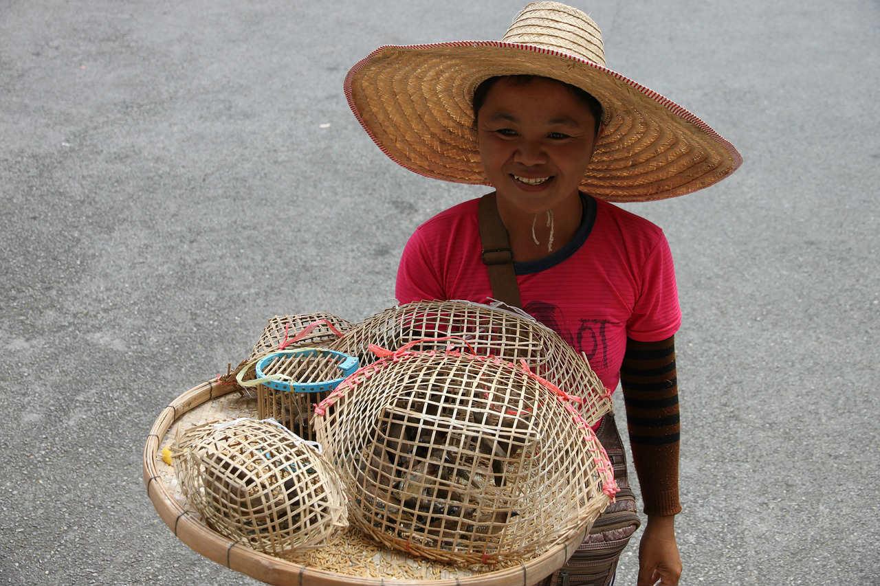 thailand holidays