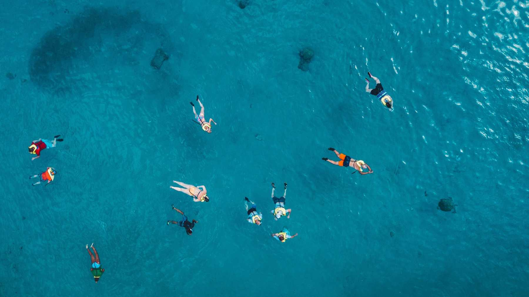 Curacao snorkelling