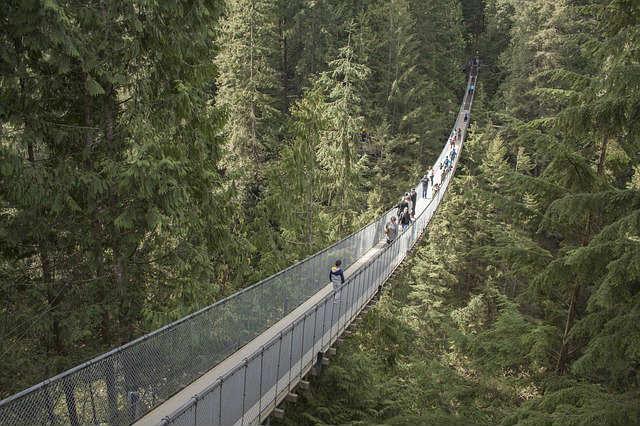 Vancouver Lynn Canyon