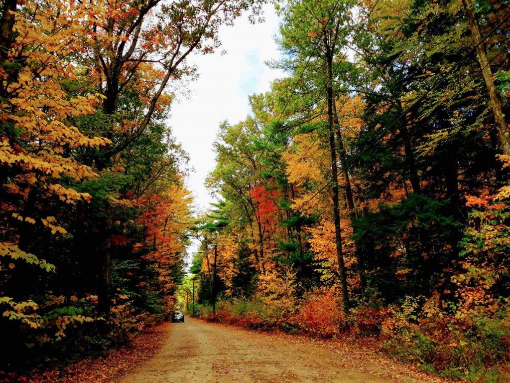 New England America
