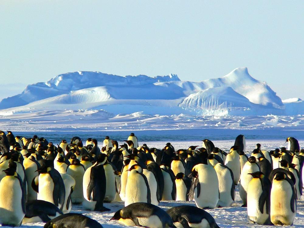 Antartica South Pole